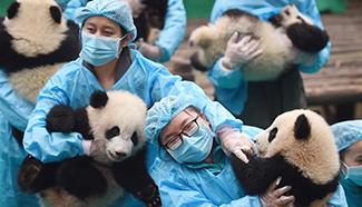Weekly Xinhua photos