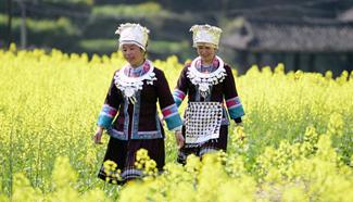 Scenery of rape flowers in full blossom around China
