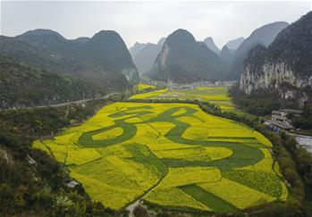 """Chinese character for """"dragon"""" seen amid rape flowers in SW China"""