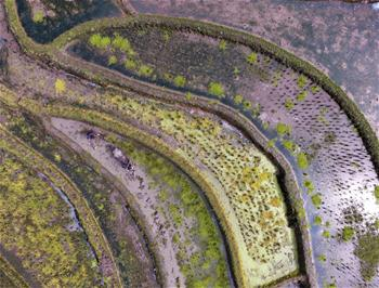 Aerial photos of rural scenery across China