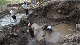 Parts of statue lifted at site of new archeological discovery in Cairo