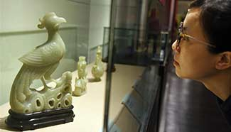 """Exhibition """"fortunate year of rooster"""" held in SE China"""