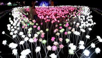People enjoy Myanmar Int'l Lighting Festival