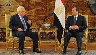 Egyptian president meets with visiting Palestinian counterpart