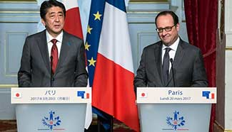 French president meets with visiting Japanese PM in Paris