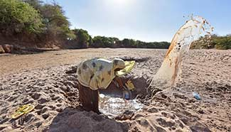Humanitarian assistance urgently needed in Somali amid severe drought