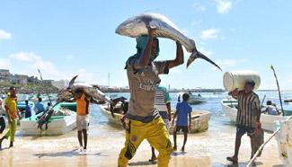 In pics: fishing harbor of Mogadishu, Somalia