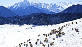Snow scenery of Qilian Mountain in northwest China