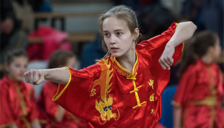 3rd Lithuanian Open Wushu Championship held in Vilnius
