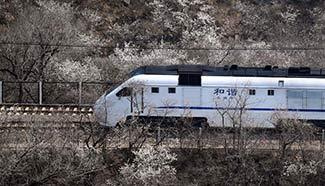 Train runs amid flowers near Juyongguan Pass in Beijing