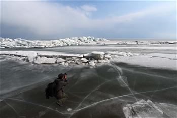 """""""Icy dragon"""" belt seen on Xingkai Lake in NE China"""