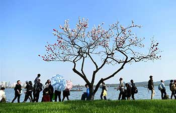 Qingming, a poetic Chinese festival