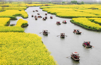 Tourists enjoy scenery of cole flowers on boats in east China's Jiangsu
