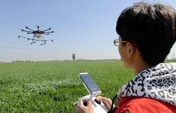 Drone team members spray pesticide in north China's Hebei