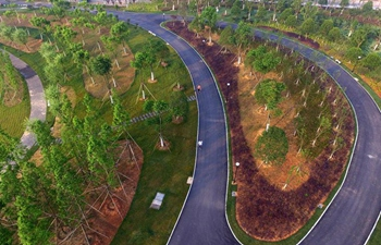 Ecological recreation park seen in east China's Jiangxi