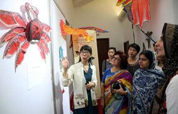 Exhibition of Chinese kites kicks off in Islamabad