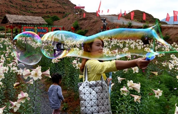 Lily garden attracts visitors in Jiangxi Province, E China