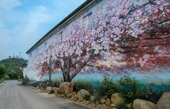 In pics: wall painting in Anji County, E China