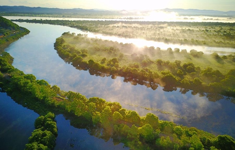 Wetland scenery amongst morning mist along Wusuli River in NE China