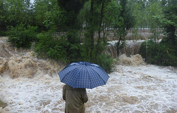 Flood hits Guizhou's Yuqing County, SW China