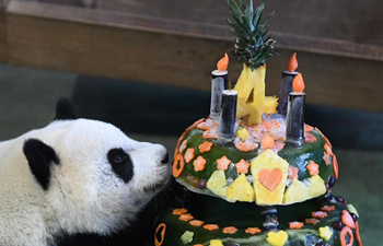 "Taipei Zoo celebrates 4th birthday of giant panda ""Yuan Zai"""