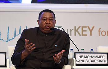 OPEC chief hopeful of oil stocks decline
