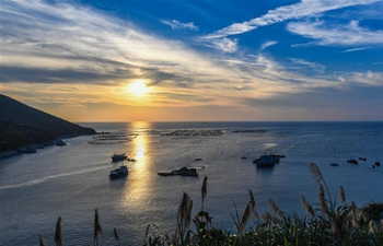 Scenery of Nanji islands in east China's Zhejiang