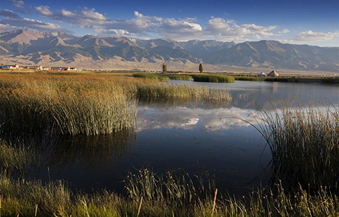 Beautiful scenery of Gaojiahu wetland park in NW China's Xinjiang