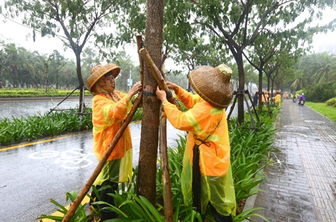 China's Hainan braces for Typhoon Sonca