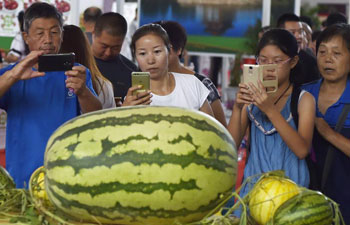 10th Int'l Agricultural Expo held in northeast China's Liaoning