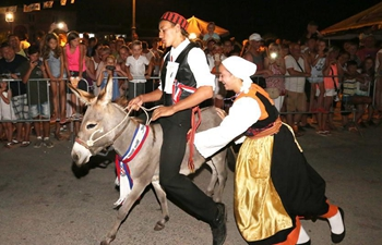 Traditional donkey race held in Croatia