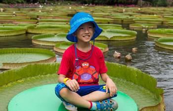 In pics: Xishuangbanna tropical botanic garden