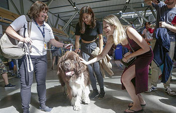 Therapy dogs help relief anxiety and stress at Vancouver Int'l Airport