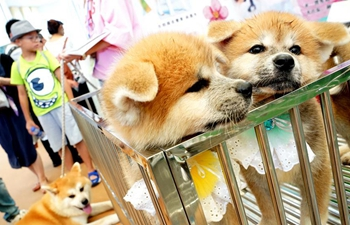 Pet Fair Asia 2017 kicks off in Shanghai