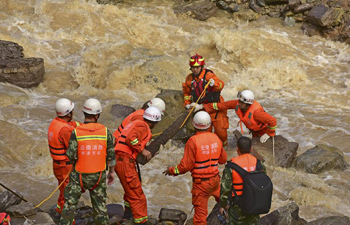 Rescuers check landslide sites in SW China's county
