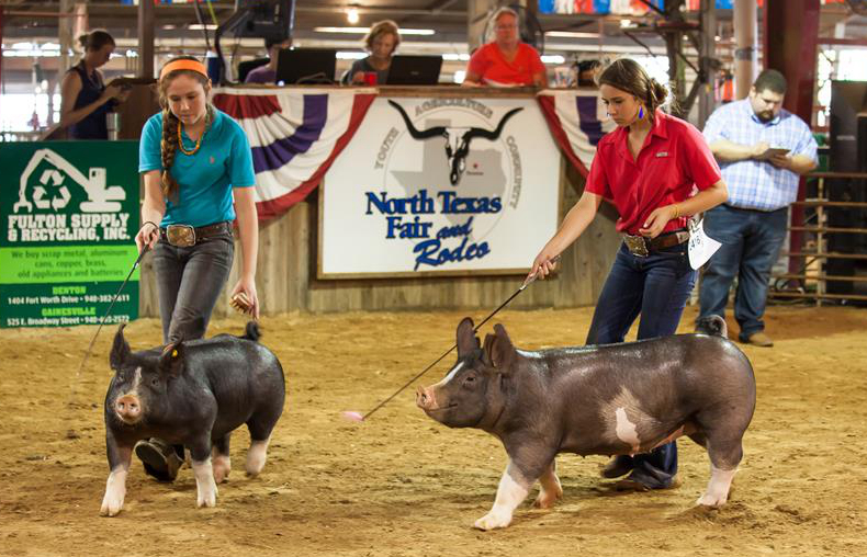 In pics: North Texas Fair and Rodeo in U.S.
