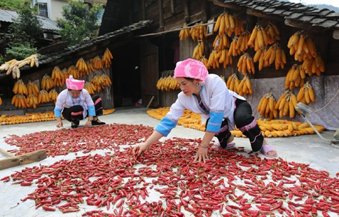 Villagers air harvests in south China