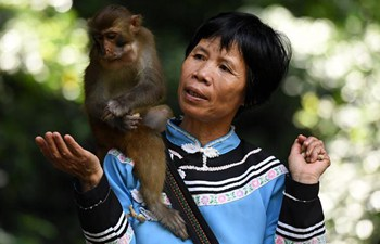 "Pic story: ""Monkey mother"" Pan Huifen"