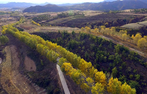 Autumn scenery of Fengning in N China's Hebei