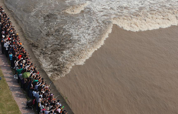 Qiantang tidal bore reaches peak