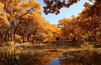 Stunning snapshots from autumn scenery across China