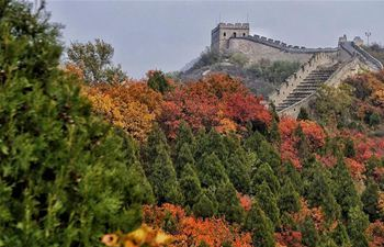 Stunning autumn scenery of Badaling National Forest Park in Beijing