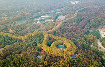 Scenery of Zhongshan scenic area in Nanjing, China's Jiangsu