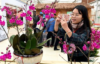 5th Orchid Exhibition of China kicks off in Fujian