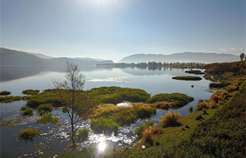 Water quality of Zibi Lake improved in SW China's Yunnan