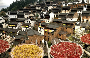 "Wuyuan puts up centuries-old houses for ""adoption"""