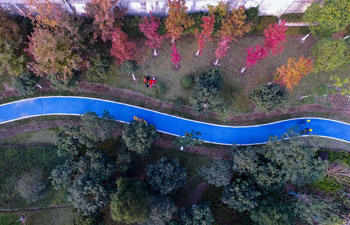 Blue roads offer people eco-friendly travel choice in E China