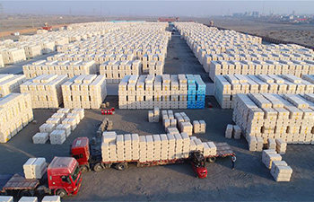 Ginned cotton transportation starts in NW China's Xinjiang