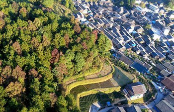 Scenery of Linlue Village in south China's Guangxi