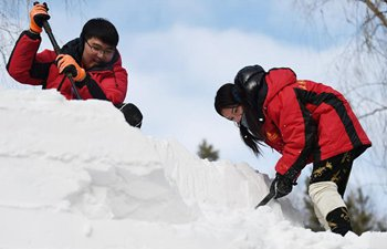 College Student Snow Sculpture Contest kicks off in NE China